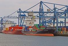 Containerships som laddar på logistiska slutliga Rotterdam Arkivbilder
