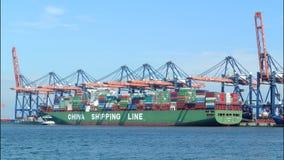 Containervrachtschepen stock footage