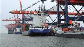 Containervrachtschepen stock videobeelden
