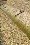 Contaminação da água, fundo ambiental Imagem de Stock Royalty Free