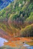Contaminación de agua Fotografía de archivo libre de regalías