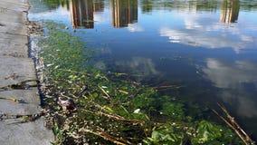 Contaminación de agua Desastre natural almacen de metraje de vídeo