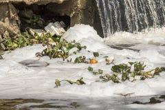 Contaminación de agua en el río foto de archivo libre de regalías