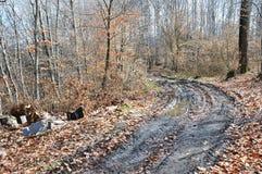 Contaminación de hoy de la cultura humana de la naturaleza y del bosque fotos de archivo libres de regalías