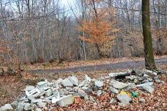 Contaminación de hoy de la cultura humana de la naturaleza y del bosque fotos de archivo