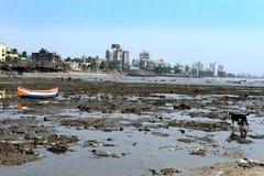 Contaminación de la playa del mar de Bombay Fotografía de archivo libre de regalías