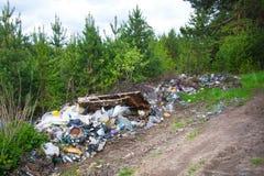 Contaminación del bosque por los desperdicios del hogar Una pila de basura en el bosque el problema global de la contaminación imagenes de archivo