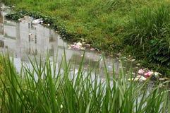 Contaminación del río Fotos de archivo libres de regalías