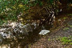 Contaminación en el agua Foto de archivo libre de regalías