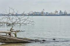 Contaminación plástica en el río fotos de archivo