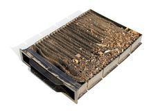 Contaminated car cabin air carbon filter. Isolated on a white background Stock Photography