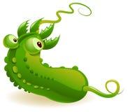 Contaminated Cucumber Stock Photo