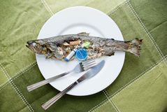 Contaminated fish. Cooked fish full of rubbish inside served on a plate, conceptual royalty free stock images