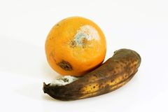 Contaminated fruits Royalty Free Stock Photo