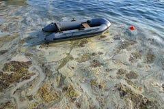 Contaminated sea Stock Images
