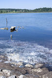 Contaminated sea water Royalty Free Stock Photos