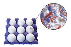 Contamination des oeufs avec des bactéries, concept médical pour la transmission des infections de nourriture par des oeufs photographie stock libre de droits