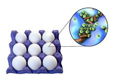 Contamination of eggs with bacteria, medical concept for transmission of food infections through eggs. Such as salmonellosis, listeriosis and other. 3D Royalty Free Stock Images