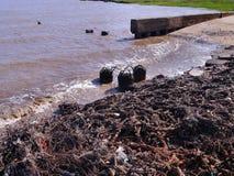 Contamination of a seashore. Debris and flotsam on a seashore Royalty Free Stock Images