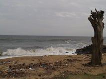 Contamitation στην παραλία σε μια νεφελώδη ημέρα Στοκ φωτογραφία με δικαίωμα ελεύθερης χρήσης