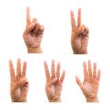 Contando as mãos Imagem de Stock Royalty Free