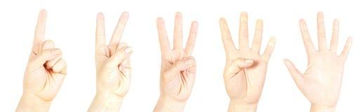 Contando a mão Imagem de Stock