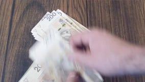 Contando o dinheiro Zloty polonês de PLN filme