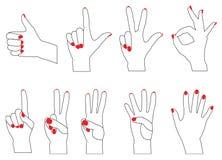 Contando os dedos Ilustração Stock