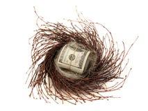 Contant geld in nestei Royalty-vrije Stock Fotografie