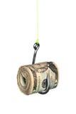 Contant geld op fishook stock fotografie