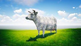 Contant geldkoe Stock Foto