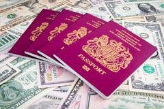 Contanti del passaporto Immagine Stock