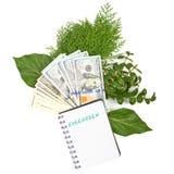 contas de Cem-dólar, um ramo de arbustos verdes e caderno na Foto de Stock