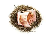 Contas do Euro no ninho do pássaro isolado Fotos de Stock Royalty Free