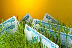 Contas do rublo entre a grama verde Imagens de Stock