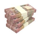 Contas dos dinares de Jordânia isoladas no fundo branco Fotografia de Stock