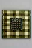 Contatti dell'oro sull'unità di elaborazione moderna del computer fotografia stock