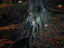 Conte de fées avec la maison et le potiron d'elfe dans la forêt Photo libre de droits