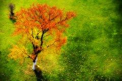 Conte de fées d'automne Photographie stock