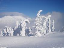 Conte de fées de l'hiver images stock