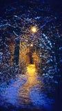 Conte de fées de l'hiver photographie stock libre de droits