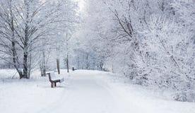 Conte de fées de l'hiver Photo stock