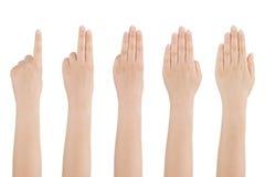 Conteggi della mano della donna da uno a cinque. Immagini Stock