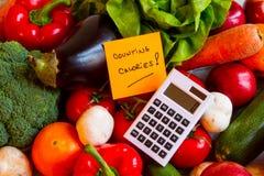 Conteggio delle calorie Fotografie Stock