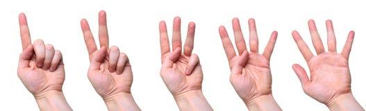 Conteggio delle mani Fotografia Stock