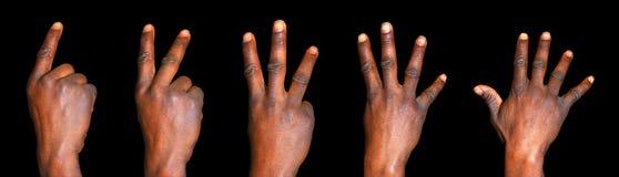 Conteggio delle mani da una a cinque Fotografia Stock Libera da Diritti