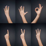 Conteggio delle mani della donna (0 - 5) Fotografia Stock Libera da Diritti