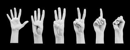Conteggio delle mani della donna (1 - 4) Fotografia Stock Libera da Diritti