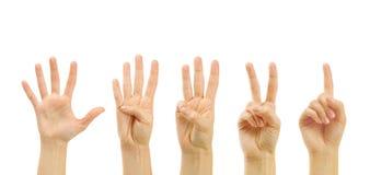 Conteggio delle mani della donna (1 - 5) Fotografia Stock