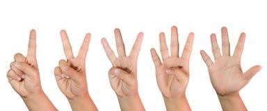 Conteggio delle mani della donna (1 - 5) isolato Immagine Stock